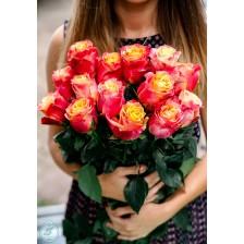 Розы цвета пламени